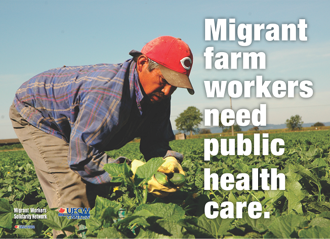 """Migrant Farm Workers Need Public Health Care."" - Front of campaign postcard"